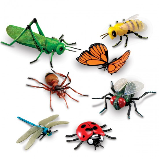 Set de Insectos Gigantes Learning Resources STEM